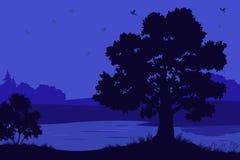 Paysage, arbres, rivière et oiseaux illustration stock