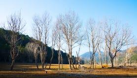 Paysage au catalan Pyrénées en hiver Photographie stock