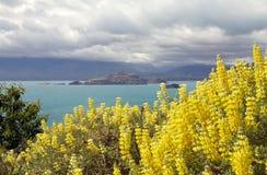 Paysage au Général Carrera Lake, Patagonia, Chili Photos libres de droits