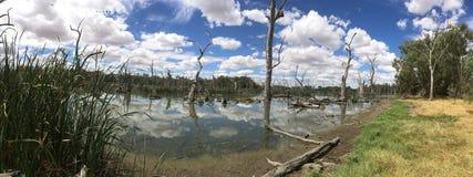 Paysage australien de côté de lac Photo stock