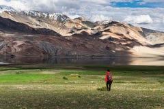 Paysage autour de lac tso Moriri dans Ladakh, Inde photo libre de droits