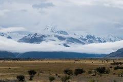 Paysage autour de Mt Parc national de cuisinier/Aoraki, Nouvelle-Zélande Photographie stock