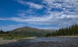 Paysage avec des arbres de montagnes et une rivière Photos libres de droits