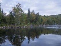 Paysage avec des arbres et des cieux Photo stock