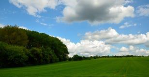Paysage avec des arbres et des nuages Photos libres de droits