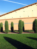 Paysage avec des arbres et des ombres photos stock
