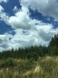 Paysage avec des nuages Image libre de droits