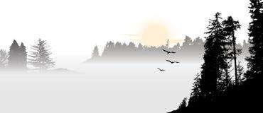 Paysage avec des oiseaux de vol pendant le lever de soleil illustration stock