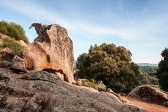 Paysage avec des roches de Filitosa, Corse Photos libres de droits