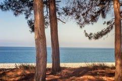 Paysage avec des vues de mer Pitsunda, Abkhazie Photos stock