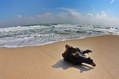 Paysage avec l'exposition de vagues et le ciel bleu Photographie stock