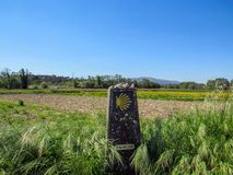 Paysage avec la coquille de feston jaune signant le chemin vers Saint-Jacques-de-Compostelle sur l'itinéraire de pèlerinage de Sa image libre de droits
