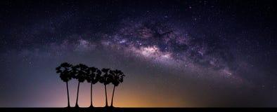 Paysage avec la galaxie de manière laiteuse Ciel nocturne avec des étoiles et le silhou images libres de droits