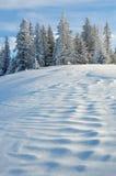 Paysage avec la neige en hiver Images libres de droits