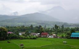 Paysage avec la pluie et les nuages au-dessus des collines Images stock