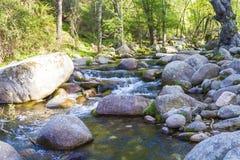 Paysage avec la rivière Image stock