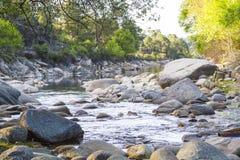 Paysage avec la rivière Photographie stock