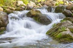 Paysage avec la rivière Image libre de droits