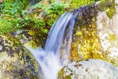 Paysage avec la rivière Images libres de droits