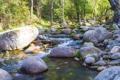 Paysage avec la rivière Photo libre de droits