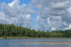 Paysage avec la rivière et la forêt sur l'horizon Cumulus en ciel Nature letton Arbre dans le domaine photos stock