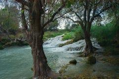 Paysage avec la rivière et les arbres Images libres de droits