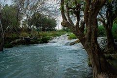 Paysage avec la rivière et les arbres Photos stock