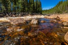 Paysage avec la rivière, la rapide et la forêt Photographie stock libre de droits