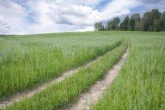 Paysage avec la route rurale par un champ photo stock