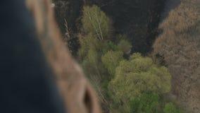 Paysage avec la vue aérienne de forêt et de ville clips vidéos