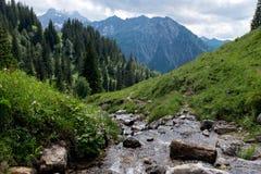 Paysage avec le courant de rivière photos stock