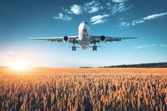 Paysage avec le grand avion blanc de passager Image libre de droits