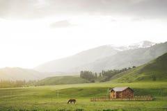 Paysage avec le hourse et les montagnes images libres de droits