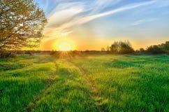 Paysage avec le lever de soleil au-dessus du pré images libres de droits