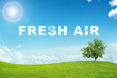 Paysage avec le mot d'air frais Photographie stock