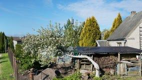 Paysage avec le pommier de floraison Image libre de droits