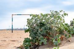 Paysage avec le poteau de but du football sur le sable de plage image libre de droits