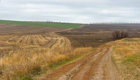 Paysage avec les champs agricoles en Ukraine centrale Image libre de droits