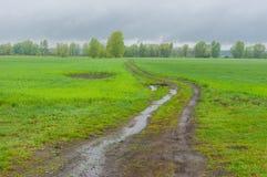Paysage avec les champs et la route de campagne agricoles Image libre de droits