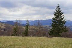 Paysage avec les montagnes carpathiennes Photographie stock