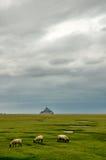 Paysage avec Mont Saint Michel sur le fond Images stock