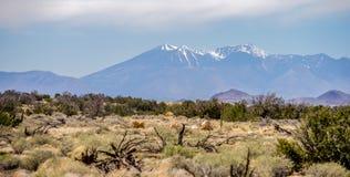 Paysage avec plus grand maximal de Humphreys en Arizona Image libre de droits