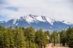 Paysage avec plus grand maximal de Humphreys en Arizona Images libres de droits
