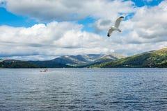 Paysage avec un lac et des yachts Images stock