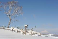 Paysage blanc d'hiver avec la mangeoire et un volcan couvert de neige Photo stock