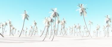 Paysage blanc de Palm Beach de neige d'hiver Image stock