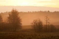 paysage brumeux images stock