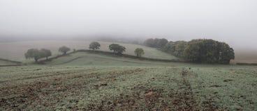 Paysage brumeux brumeux de matin d'automne dans la campagne britannique Photos stock