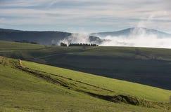Paysage brumeux dans la forêt noire, Allemagne Photos stock