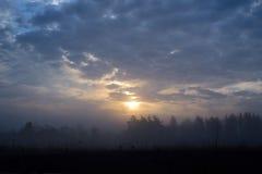 Paysage brumeux des prés lithuaniens le matin d'été Photo libre de droits